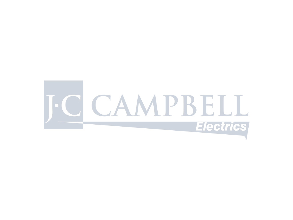 Dimplex BFD20 Electric Stove Fire